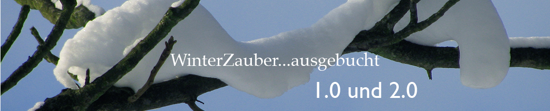header winterzauber